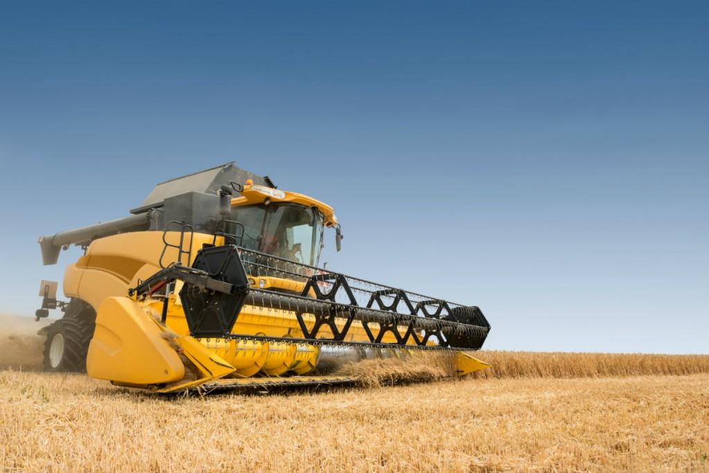 Trabajos en sector agrícola